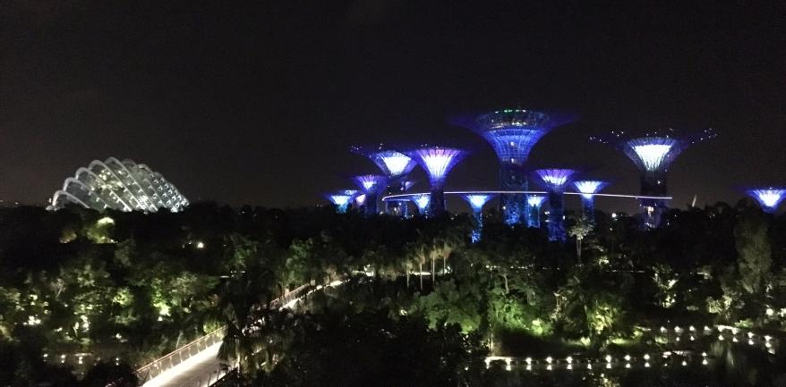 singapore-0201.jpg