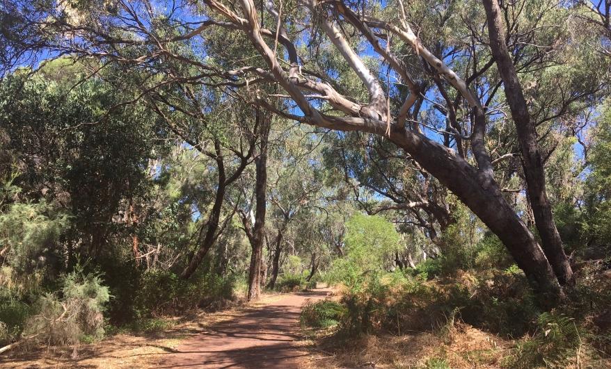 0303-australia.jpg