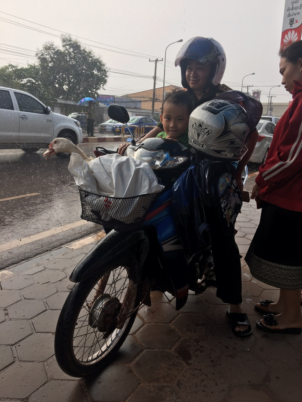 0524 Laos x7