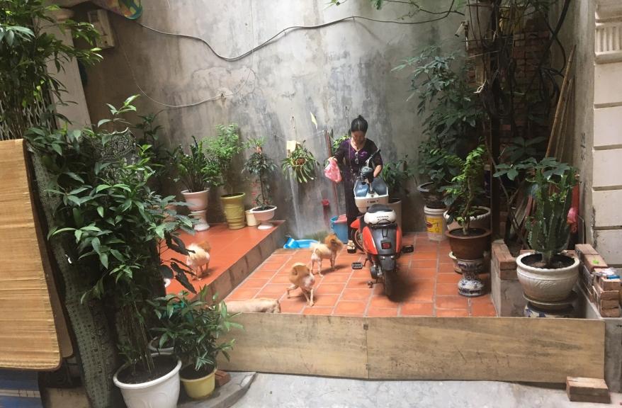 0527-vietnam-x2.jpg
