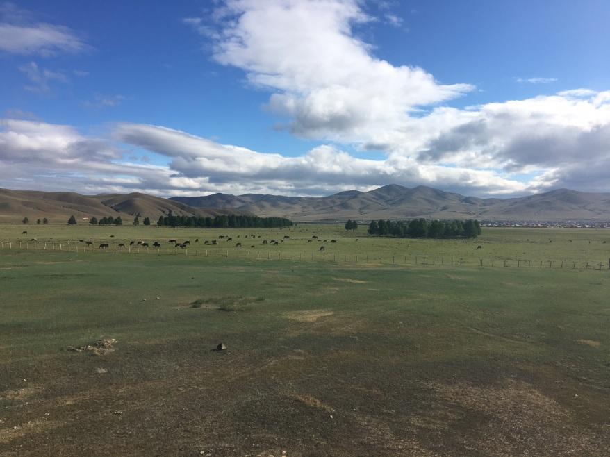0606 Mongolia x1