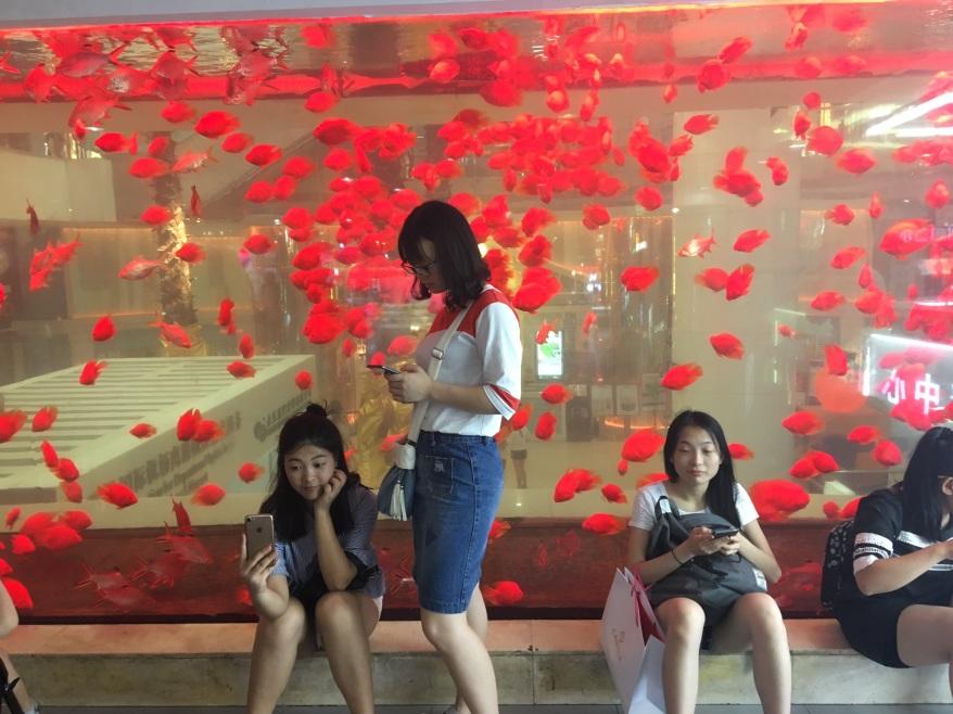0627 China x4